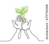 hands holds a living green
