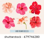 beautiful hand drawn botanical... | Shutterstock .eps vector #679746280