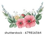hand painted watercolor... | Shutterstock . vector #679816564