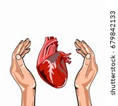 realistic heart in palm | Shutterstock . vector #679842133