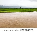 agriculture rice field flooded... | Shutterstock . vector #679978828