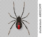 black spider isolated on... | Shutterstock .eps vector #680022499