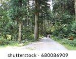 hiking trail through natural | Shutterstock . vector #680086909