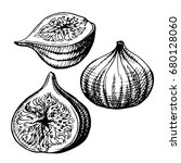 hand drawn illustration of figs....   Shutterstock .eps vector #680128060