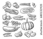 set vegetables. cucumbers  napa ... | Shutterstock .eps vector #680132920