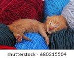 new born baby cat sleeping.... | Shutterstock . vector #680215504