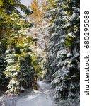 trail in winter forest. beskids ...   Shutterstock . vector #680295088