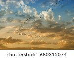 A Flock Of Birds Fly At Sunset...