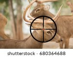 Small photo of a hunter aimed at a deer