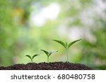 tree planting | Shutterstock . vector #680480758