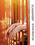 female hands behind prison yard ... | Shutterstock . vector #680499970