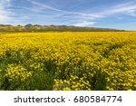 spring wildflowers near carrizo ...   Shutterstock . vector #680584774