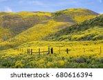 spring wildflowers near carrizo ...   Shutterstock . vector #680616394