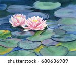 Pink Water Lilies With Colorfu...