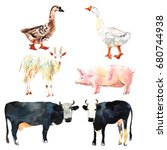 farm animal set drawing in... | Shutterstock . vector #680744938