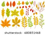 set of colorful autumn leaves... | Shutterstock .eps vector #680851468