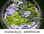 interior fittings for terrarium ... | Shutterstock . vector #680854228
