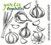 garlic vegetable set hand drawn ... | Shutterstock .eps vector #680883469