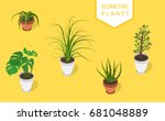 isometric plant in modern pot... | Shutterstock .eps vector #681048889