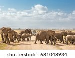tourists on safari watching and ... | Shutterstock . vector #681048934