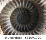 Fossil Ammonite Swirl...