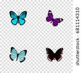 realistic butterfly  spicebush  ... | Shutterstock .eps vector #681114310