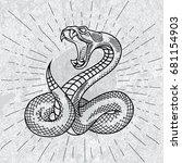 viper snake. hand drawn... | Shutterstock .eps vector #681154903