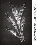 ears of wheat. chalk sketch on... | Shutterstock .eps vector #681176548