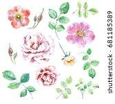 set of floral design watercolor ... | Shutterstock . vector #681185389