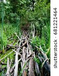 Small photo of Extreme tropical path bridge via guag mire morass backwater with