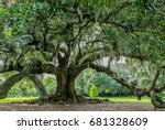 Small photo of Tree of life in Audubon Park, New Orleans, Louisiana. Huge live oak tree said possibly to be 300 years old (planted about 1740). Limbs spread to160 feet. The girth is measured at about 27 feet.