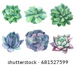 colorful floral set watercolor... | Shutterstock . vector #681527599