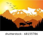 battle of ibex in mountains | Shutterstock .eps vector #68155786