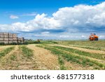Orange Tractor In The Field