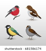 set of small birds. colorful... | Shutterstock .eps vector #681586174