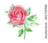 one pink rose. watercolor... | Shutterstock . vector #681749980