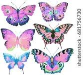 beautiful butterflies  set... | Shutterstock . vector #681756730