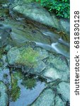 Small photo of Reflections of Nature - Reflections of fir trees found in a small pool of water adjacent to a stream.