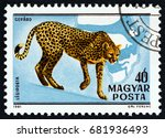 hungary   circa 1981  a stamp...   Shutterstock . vector #681936493