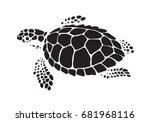 Stock vector graphic sea turtle vector 681968116