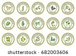 set of essential oil labels.... | Shutterstock .eps vector #682003606