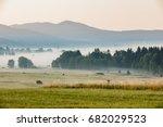 summer landscape in fog  sumava ... | Shutterstock . vector #682029523