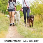 young women with their dogs... | Shutterstock . vector #682108189