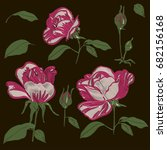 red embroidery rose blossom... | Shutterstock .eps vector #682156168
