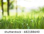 spring park | Shutterstock . vector #682188640