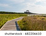 Boardwalk Through Marshland...