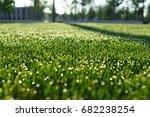 background of green fresh grass ...   Shutterstock . vector #682238254
