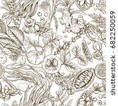 superfood. seamless botanical... | Shutterstock .eps vector #682250059