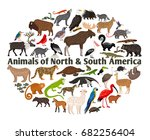 animals of north and south... | Shutterstock .eps vector #682256404