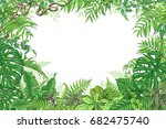 hand drawn branches and leaves... | Shutterstock .eps vector #682475740